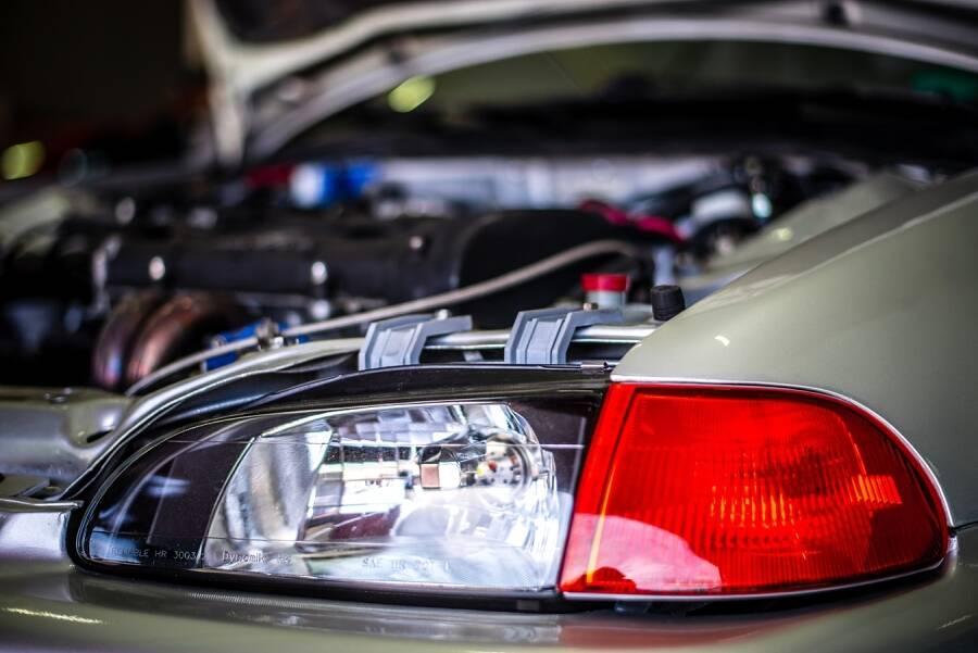 Porówneo: Kuny w samochodzie! Sposoby na zwierzęta niszczące auta
