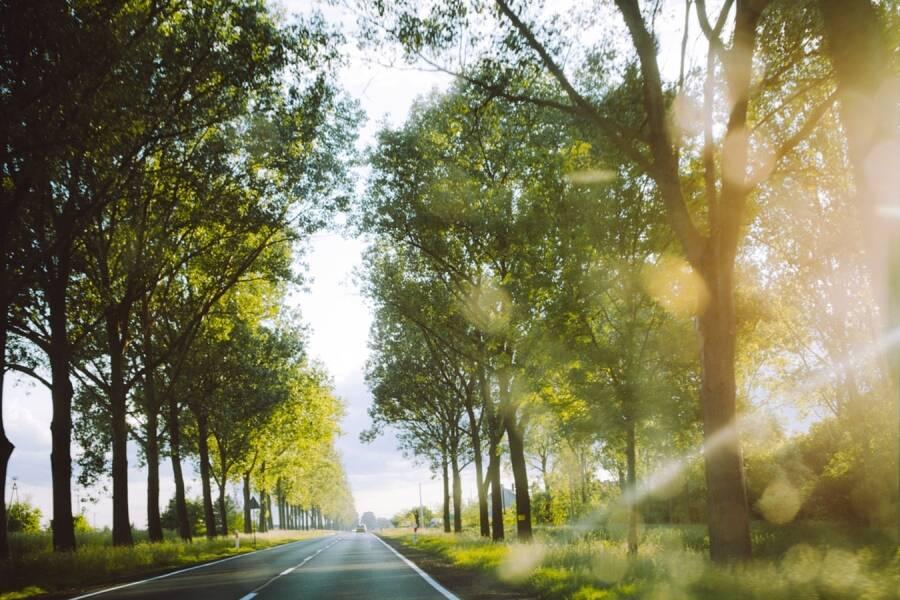 Porówneo: Limity prędkości na polskich drogach 2021